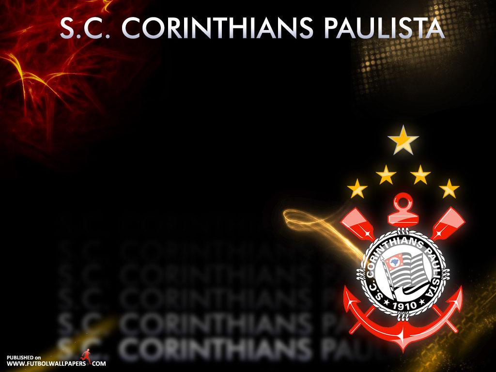 Papel de parede Palmeiras fotos grátis | Papéis de parede